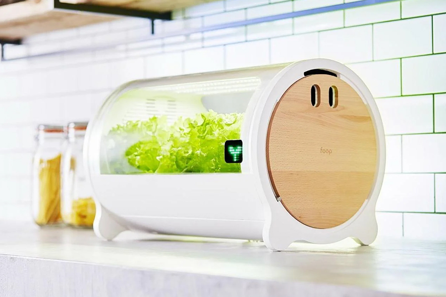 Hydroponic Grow Boxes
